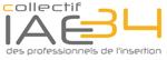Logo IAE34